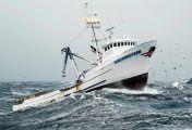 Fang des Lebens - Der gefährlichste Job Alaskas - Sprung ins kalte Wasser