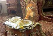 Garfield 2 - Faulheit verpflichtet